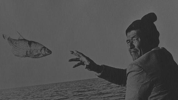 Eloy-fish